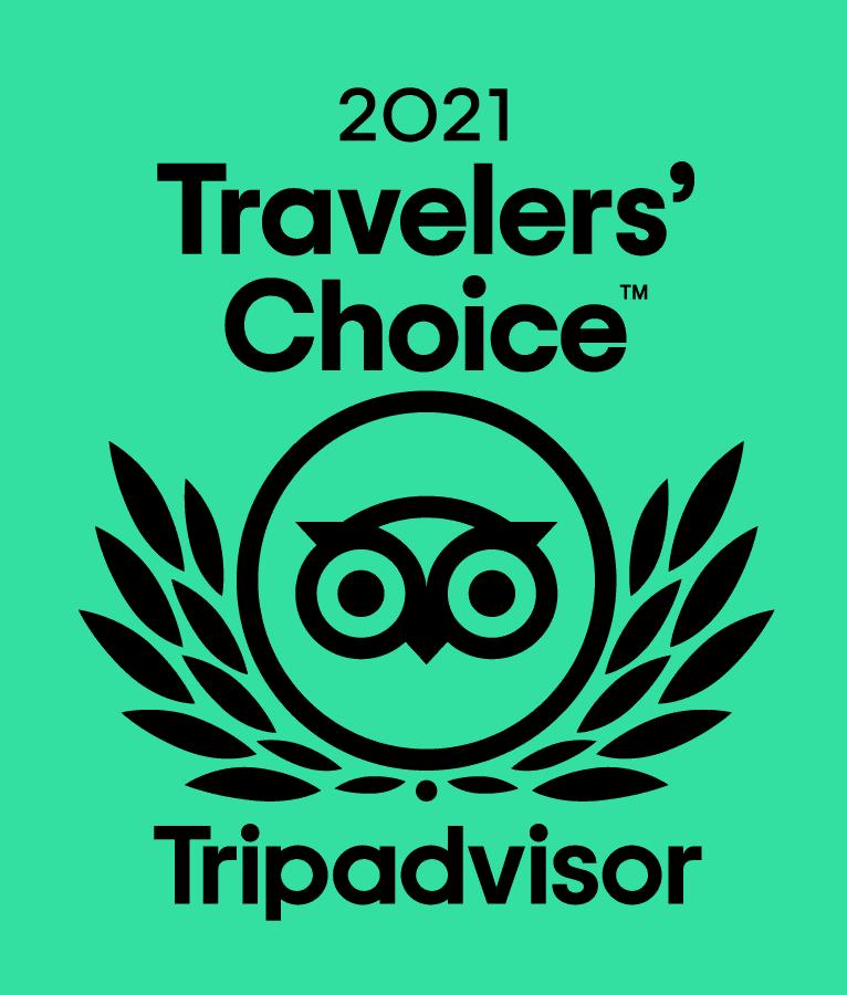 tripadvisor - travelers' choice 2021 icon